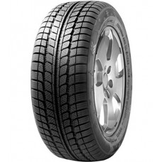 Sunny SN3830 SnowMaster 195/55R15 85H