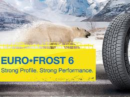 Купить зимние шины Gislaved Euro Frost 6